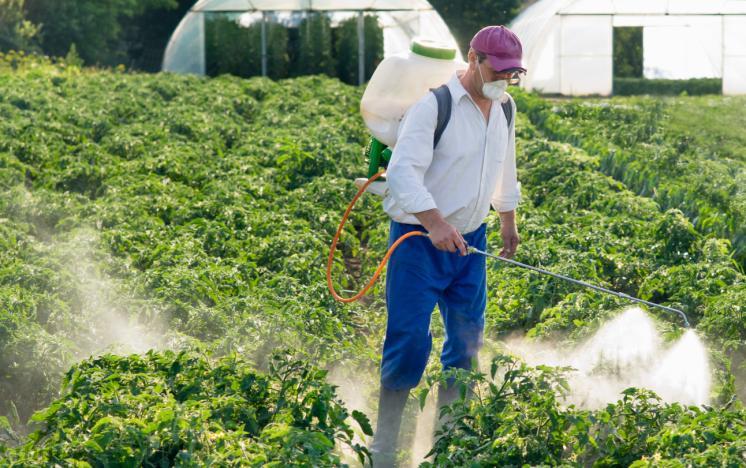 فروش بهترین سموم کشاورزی